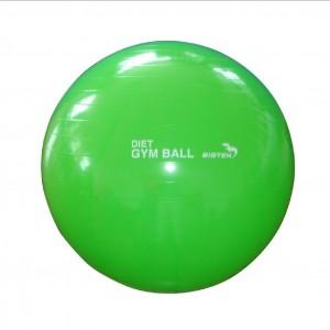 6Gluteal Muscle kickbacks using Swiss Ball